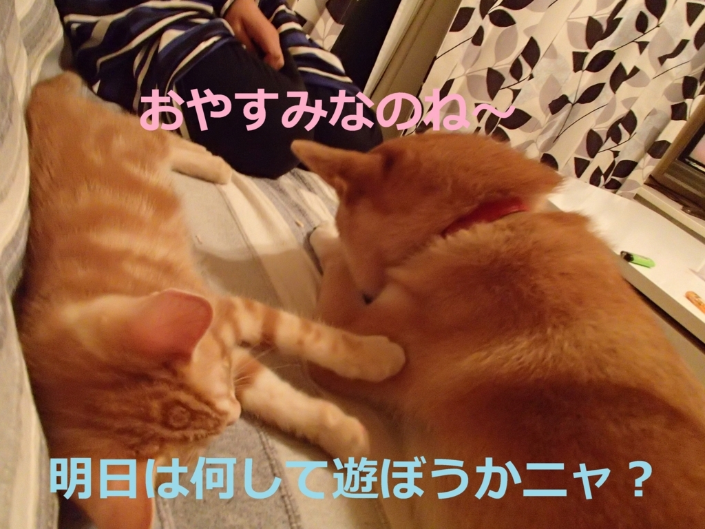 f:id:yatosyouta:20170912113722j:plain