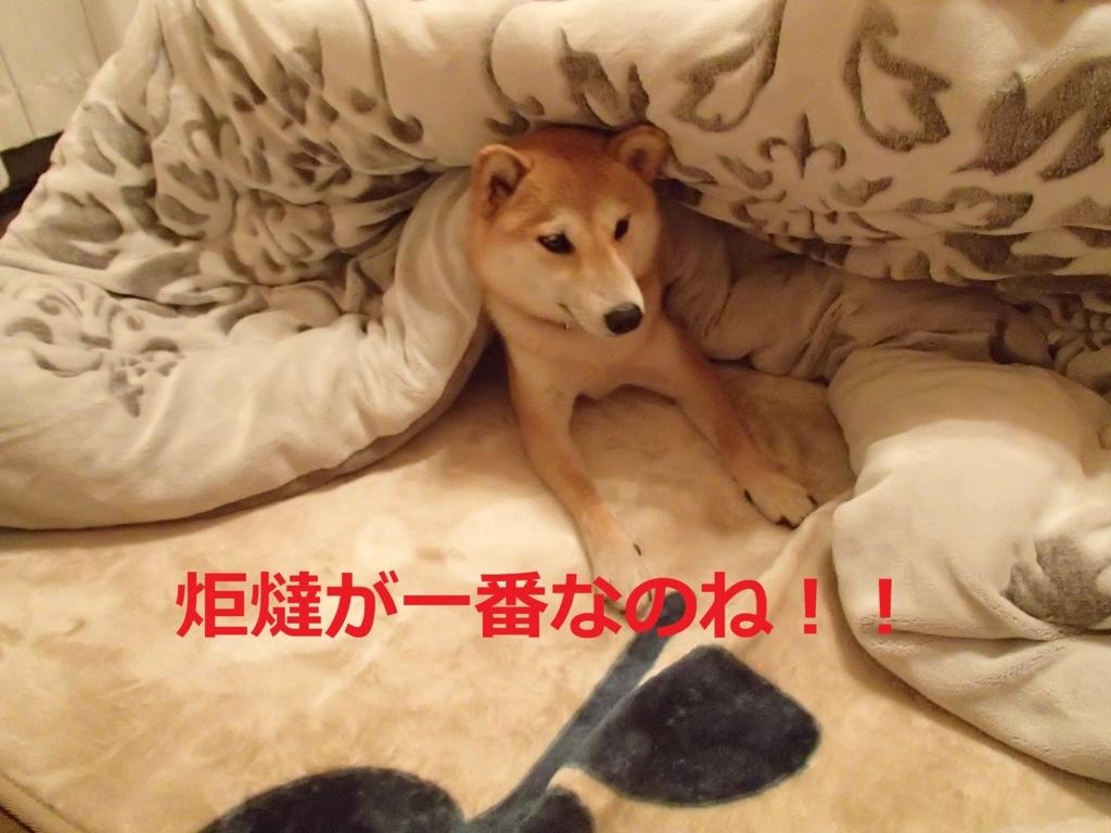 f:id:yatosyouta:20170913133640j:plain