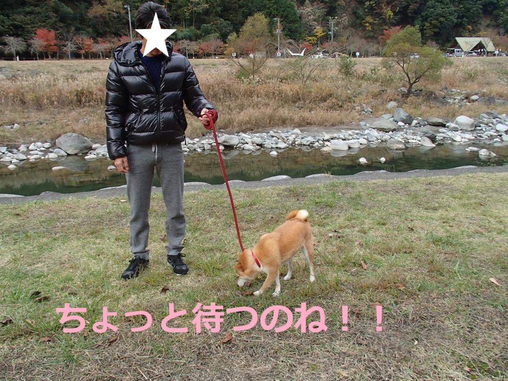f:id:yatosyouta:20170915220830j:plain