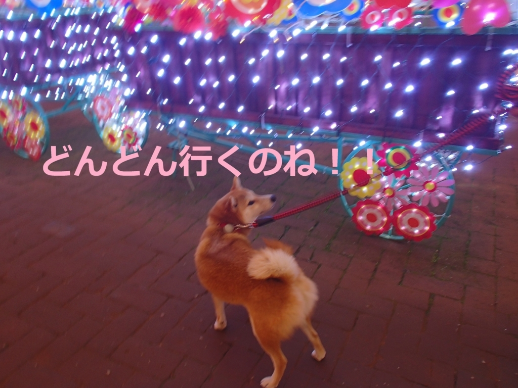 f:id:yatosyouta:20170917193825j:plain
