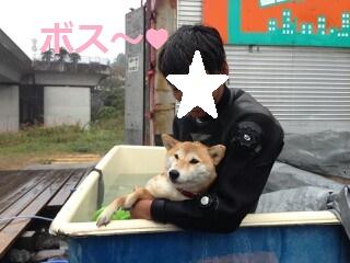 f:id:yatosyouta:20170918191658p:plain