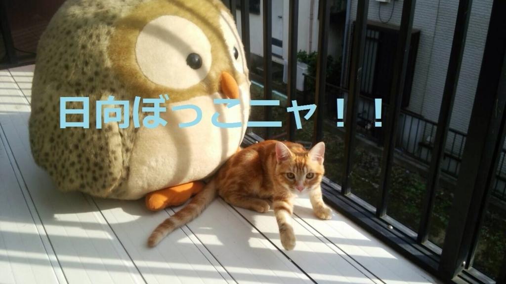 f:id:yatosyouta:20170918230653j:plain