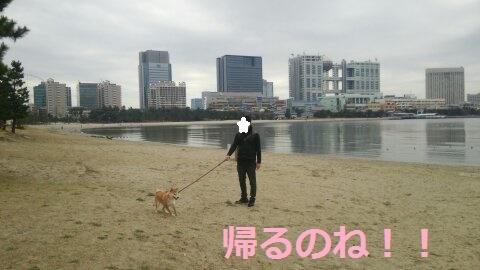 f:id:yatosyouta:20170919205536j:plain