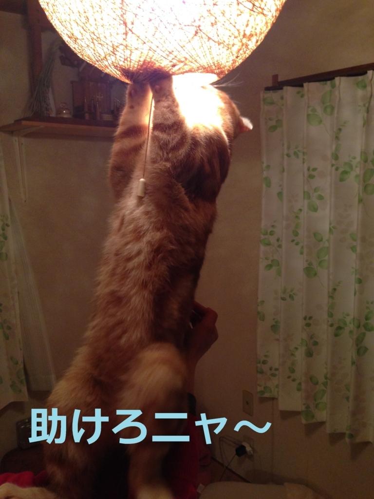 f:id:yatosyouta:20170920002016j:plain