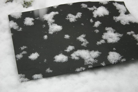 黒い紙に受けた、牡丹雪(径3センチ以上)