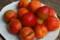 「紅浅間」杏の収穫(21.7.7)