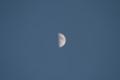 旧暦十月九日、「上弦の月」(21.11.25)(16:18)