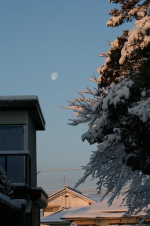 朝日が積雪を照らす。(22.2.2)(7:08)