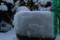 餌台が雪の綿帽子。(22.2.2)、
