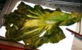 「山形青菜」の漬け物。(23.1.27)