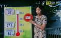 猛暑続く、「高温注意情報」。(23.7.13)