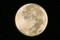 「中秋の名月」の残月。(23.9.13)(4:45)