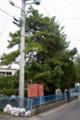 旧、岩村田保育園解体工事。(23.10.13)