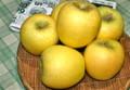 いただいた「シナノゴールド」りんご。(23.10.27)