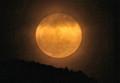 山の端に、「十二月十七日」のお月さま。(24.1.10)(18:31)