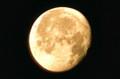 西空に、昨夜「十二月十八日」のお月さま。(24.1.12)(6:44)