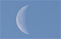 「十二月二十五日 」の白い月。(24.1.18)(7:28)
