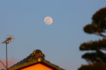 f:id:yatsugatake:20120405175159j:image:left