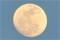 「弥生十五日」のお月さま。(24.4.5)(18:12