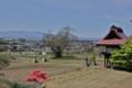 安養寺の駐車場から、北八ヶ岳方面の眺め。(24.5.13)