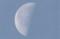 「水無月二十三日(下弦)」のお月さま。(24.8.9)(5:50)
