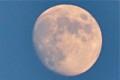 「十三夜」の名月(栗名月・後の月)。(24.10.27)(16:46)
