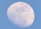 「正月十三日」のお月さま。(25.2.22)(17:05)