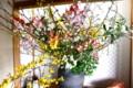 大鉢に盛られた「生け花「。(25.3.13)