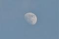 ときどき雲間に「卯月十二日」の月。(25.5.21)(18:19)