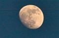 「卯月十三日」のお月さま。(25.5.22)(18:46)