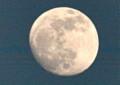 東の空高く、「卯月十四日」の月。(