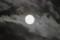 雲間に「皐月十四日」のお月さま。(25.6.22)(20:32)