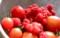 次々に熟すベリー類、ミニトマト。(25.7.1)