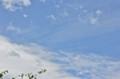 雨が上がり、青空が…。(25.7.5)