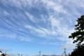 青空に白い筋雲が…。(25.7.15)(7:15)
