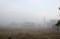 「濃霧」の朝。(25.9.3)(5:22)