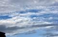 西の雲間に青空が…。(25.10.1)