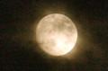 うす雲から出た「十三夜」の月。(