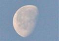 昨夜の残月・「臘月二十一日」のお月さま。(26.1.22)(7:22)