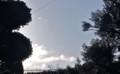 日が昇り、青空に…。(26.1.27)(8:07)