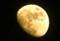 「正月十一日」の月、朧月。(26.2.10)(