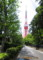 久しぶりに見た、「東京タワー」の勇姿。(26.5.12)