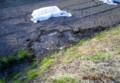 田んぼの水漏れ。(26.5.18)