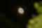 「卯月二十日」のお月さまが昇る。(26.5.18)(23:33)