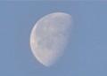 「卯月二十一日」の残月。(26.5.21)(5:05)
