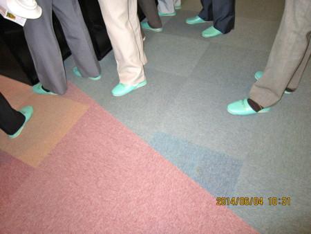 中央構造線の内帯・外帯、床面の色分け。(26.6.4)