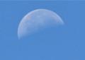 青空に、昨夜七月二十二日のの残月が。(26.8.18)(9:34)