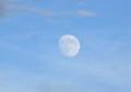 雲間に、名月「十三夜」。(26.10.6)