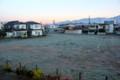 裏の更地・草原は、霜で真っ白。(26.10.30)(6:13)