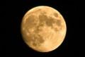 昨夜、「名月・後の十三夜」の残月。(26.11.6)(3:05)